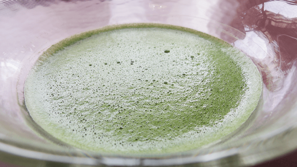 Hot Green Tea(Matcha)