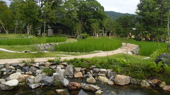 Kyoto no mori