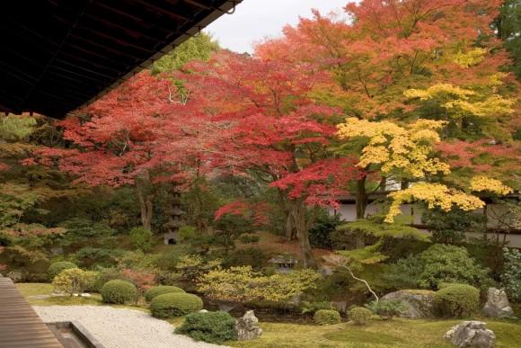 Take a rest with Gozasho Garden