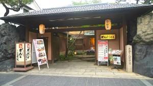 Ganko Takasegawa-Nijoen Appearance Photo