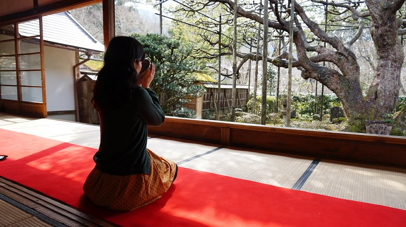 Enjoy out Matcha in Kyoto!