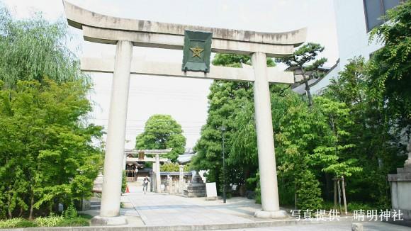 Seimei Matsuri Festival Appearance Photo