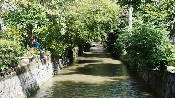 Takase River Appearance Photo